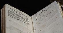 220px-Bookworm_damage_on_Errata_page