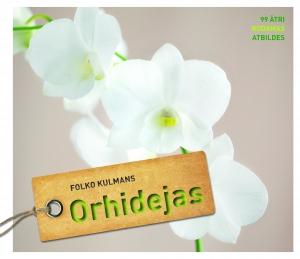 Orhidejas