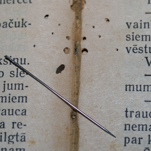 Kukaiņi 1